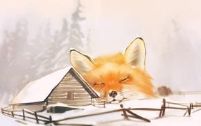 Wallpaper Fox, hut, winter, art, snow, Fox