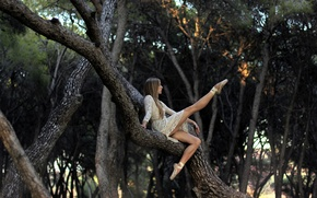 Picture girl, pose, tree, ballerina, Pointe shoes