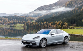 Picture Mountains, Porsche, Panamera, Silver, 2016, Metallic, 4S, (973)