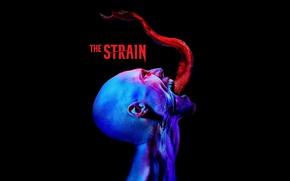 Picture USA, monster, blue, evolution, man, neon, series, vampire, fear, transformation, evil, darkness, head, error, official …