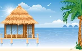 Picture sea, Palma, gazebo, sea, gazebo, coconuts, palm, coconuts