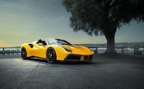 Picture car, auto, tree, Ferrari, yellow, wallpapers, tree, Spider, Rosso, Novitec, 488