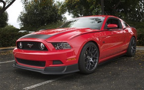 Picture Mustang, Ford, Red, RTR