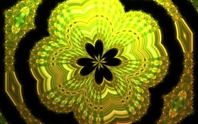 Picture flower, abstraction, color, form