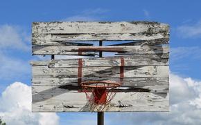 Wallpaper basket, shield, basketball