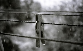 Picture autumn, squirt, rain, drop, Clothespin, rope
