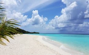 Picture beach, tropics, palm trees, the ocean, exotic, white sand, Мaldives