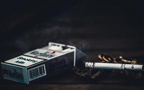 Picture macro, cigarette, Smoking kills