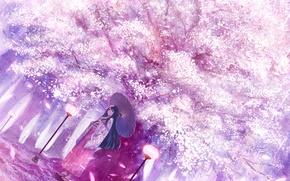Picture girl, umbrella, art, lights, cherry blossoms, bounin
