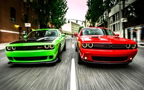 Picture Speed, Street, Asphalt, Dodge, Challenger, Street, Traffic light, Srt, Duo, Hallcat