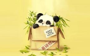Wallpaper bamboo, Panda, package