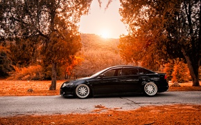 Picture autumn, tuning, black, honda, Honda, accord, chord, acura, Acura