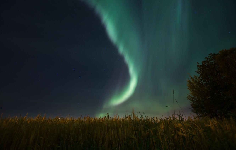 Photo wallpaper the sky, stars, night, nature, Northern lights, Aurora Borealis