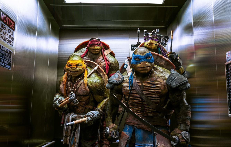 Photo wallpaper Teenage mutant ninja turtles, Raphael, Leonardo, Donatello, Teenage Mutant Ninja Turtles, Michelangelo