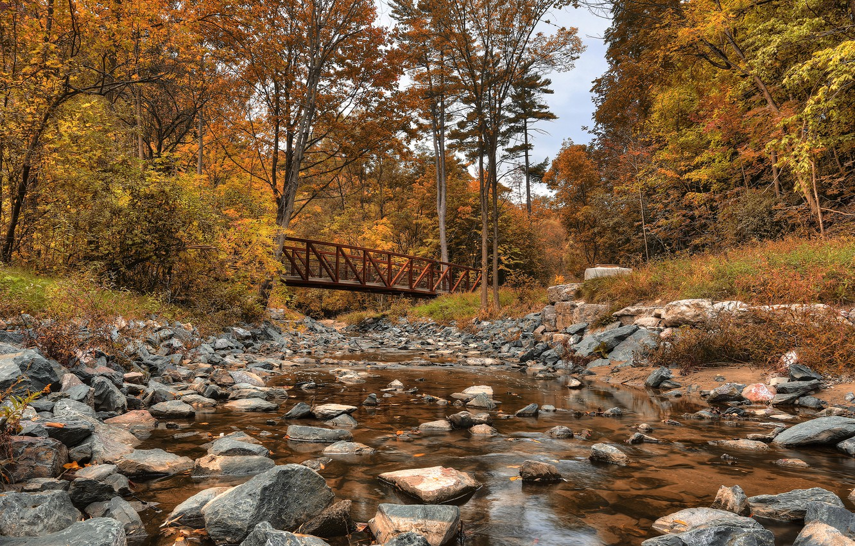 Photo wallpaper autumn, forest, trees, bridge, stones, Canada, river, Canada, Wilket Creek Park