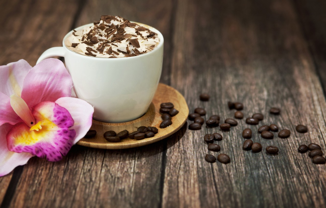 Photo wallpaper flower, foam, pink, coffee, chocolate, grain, Cup, drink, cappuccino, Orchid