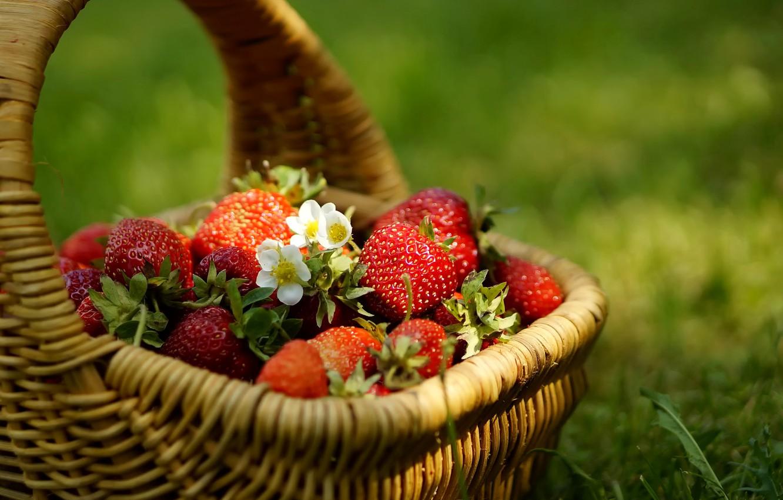 Photo wallpaper grass, berries, Strawberry, flowers, basket