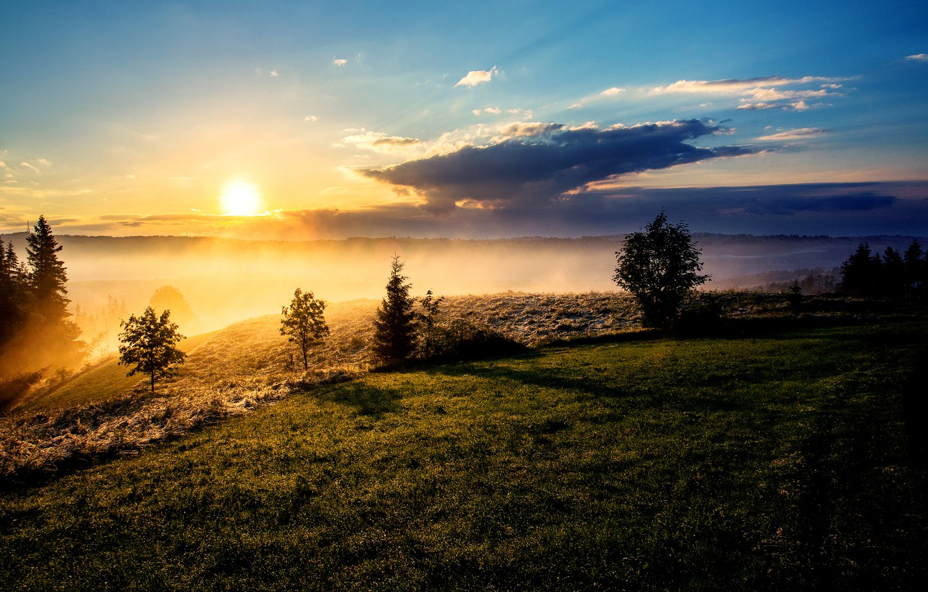 Photo wallpaper the sun, clouds, trees, fog, morning, slope