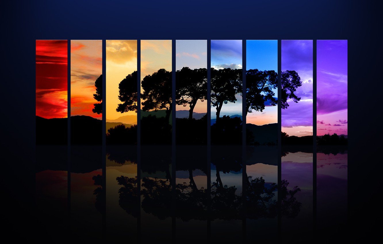Photo wallpaper strips, tree, color