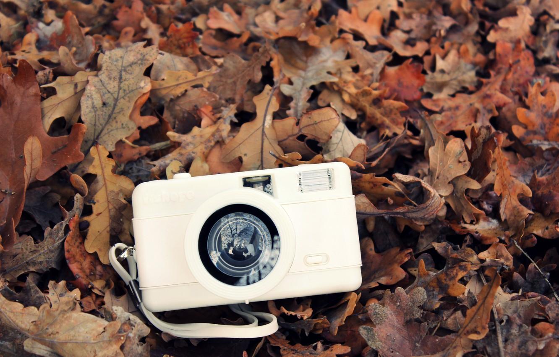 Photo wallpaper autumn, white, leaves, camera, the camera