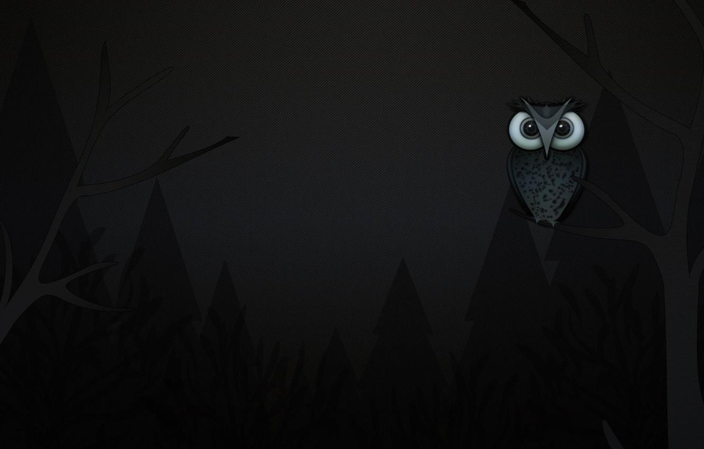 Photo wallpaper trees, owl, branch