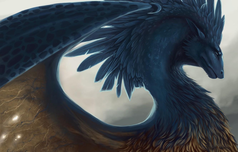 Photo wallpaper dragon, feathers, fantasy, art, Eragon
