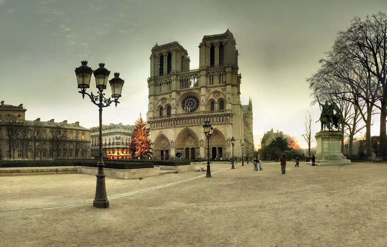Photo wallpaper winter, France, Paris, tree, area, lights, New year, tree, Paris, Notre Dame Cathedral, France, Notre …