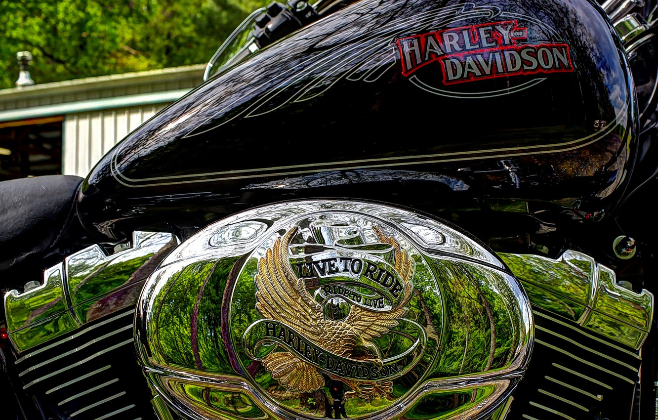 Photo wallpaper hdr, chrome, Harley Davidson, cylinders, harley, tank, live to ride
