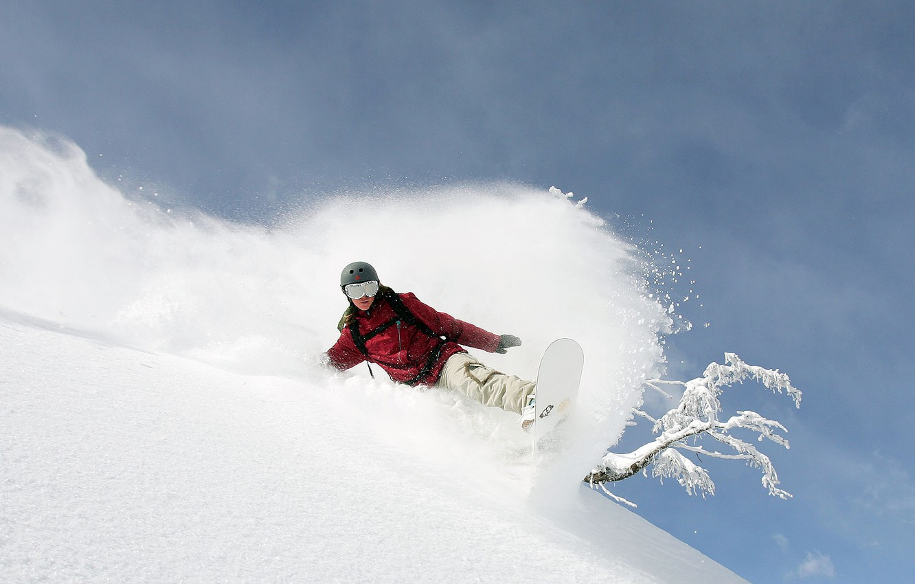 Photo wallpaper winter, snow, mountains, tree, snowboard, the descent