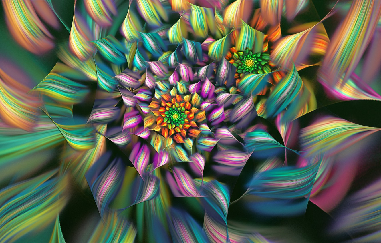 Photo wallpaper flower, line, colored, petals