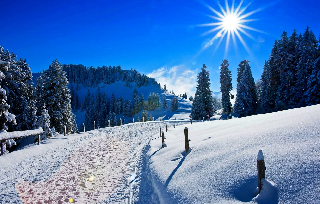Photo wallpaper winter, forest, the sky, the sun, snow, landscape, mountains, nature, Park, road, white, forest, road, …