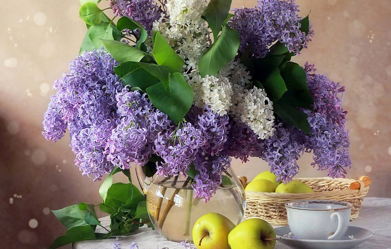 Photo wallpaper photo, Flowers, Lilac, Cup, Apples, Still life