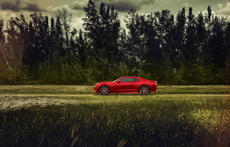 Photo wallpaper The sky, Field, Grass, Trees, Chevrolet, Forest, Machine, Camaro, Car