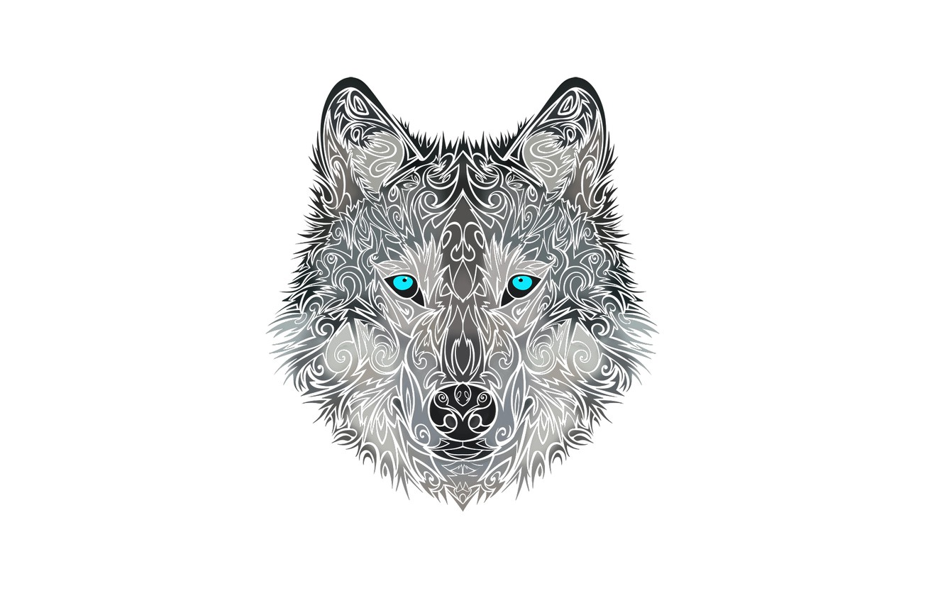Photo wallpaper face, style, wolf, dog, head, wolf