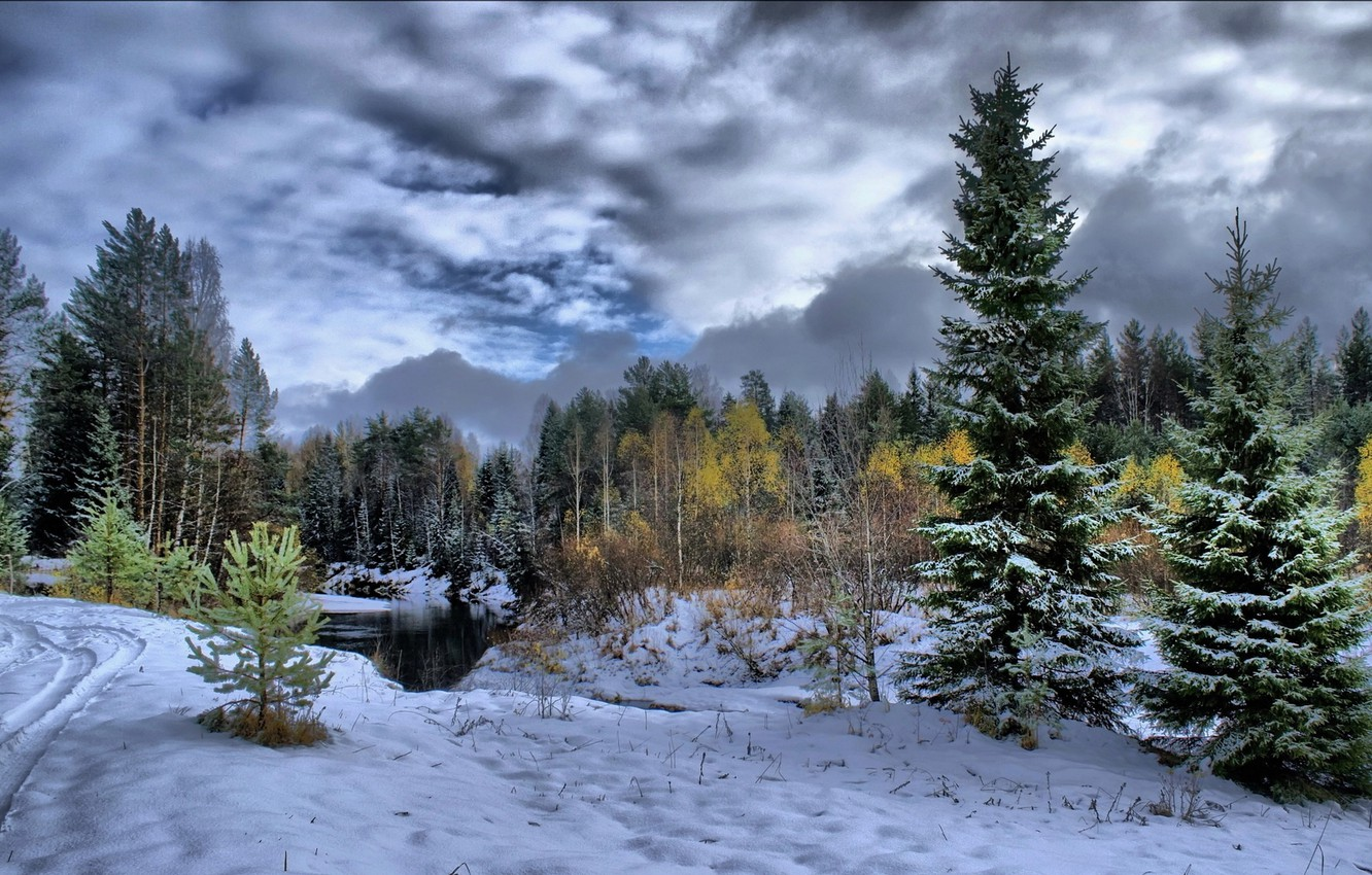 Photo wallpaper forest, snow, trees, river, Winter