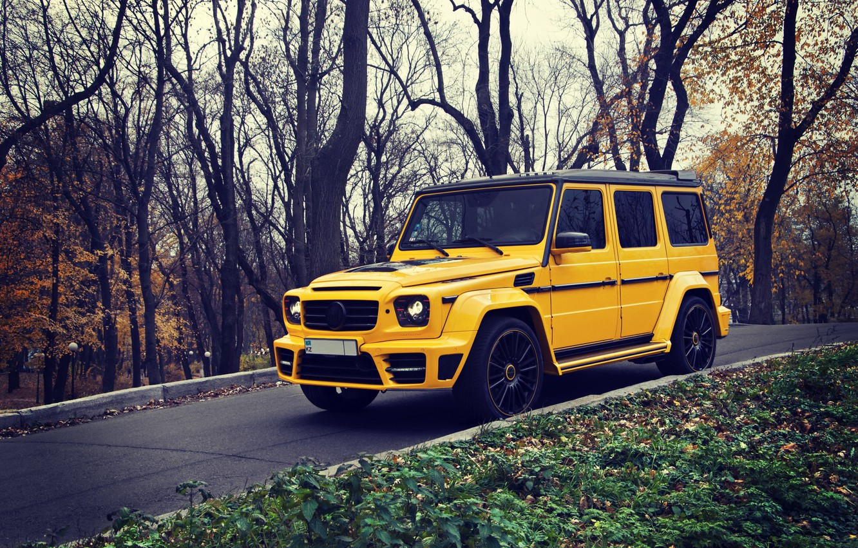 Photo wallpaper Yellow, Autumn, Mercedes, Mercedes Benz, brabus, SUV, G63