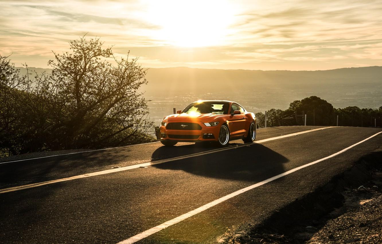 Photo wallpaper Mustang, Ford, Orange, Landscape, Sun, Sunset, California, Mountains, 2015, Aristo Collection