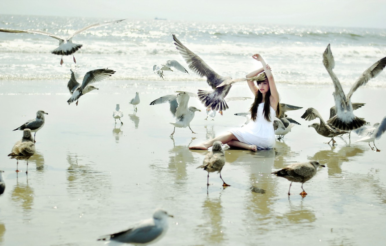 Photo wallpaper girl, birds, the situation