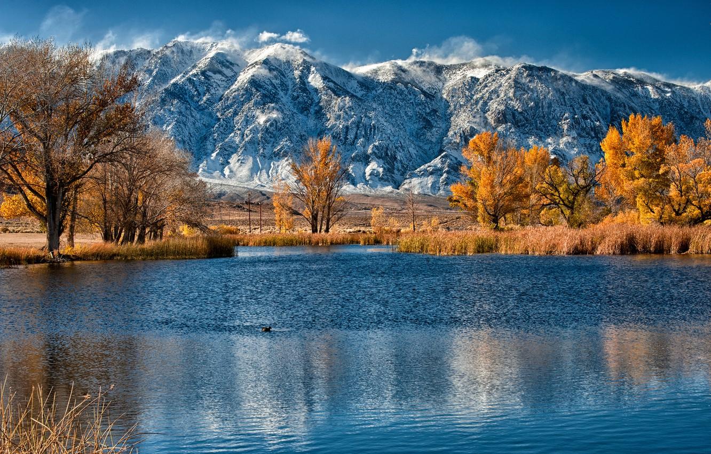 Photo wallpaper autumn, trees, mountains, lake, reed