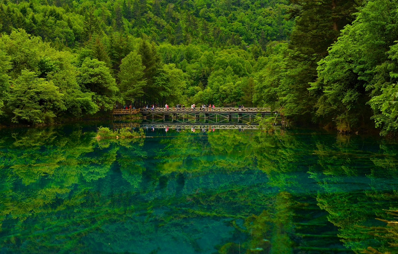 Photo wallpaper forest, bridge, lake, reflection, China, China, reserve, Sichuan, Sichuan, Jiuzhaigou, Jiuzhaigou