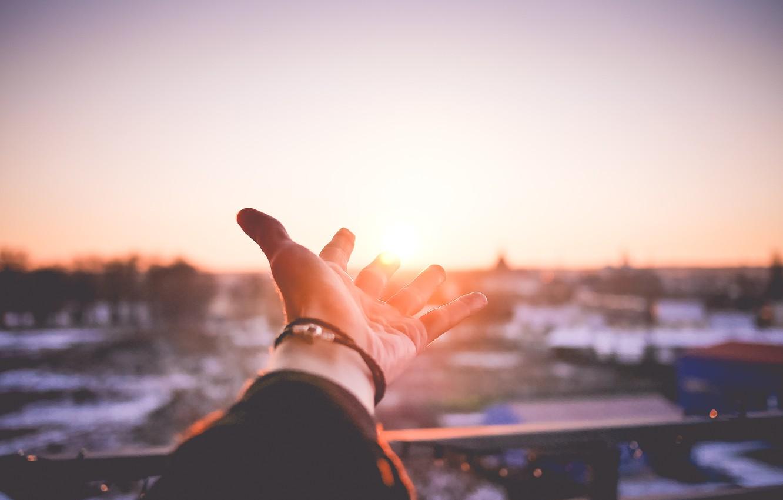 Photo wallpaper the sun, sunset, hand, palm
