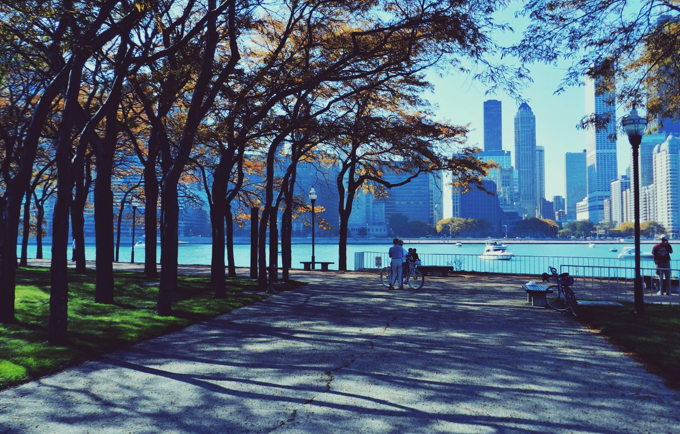 Photo wallpaper autumn, Park, people, skyscrapers, Chicago, Chicago