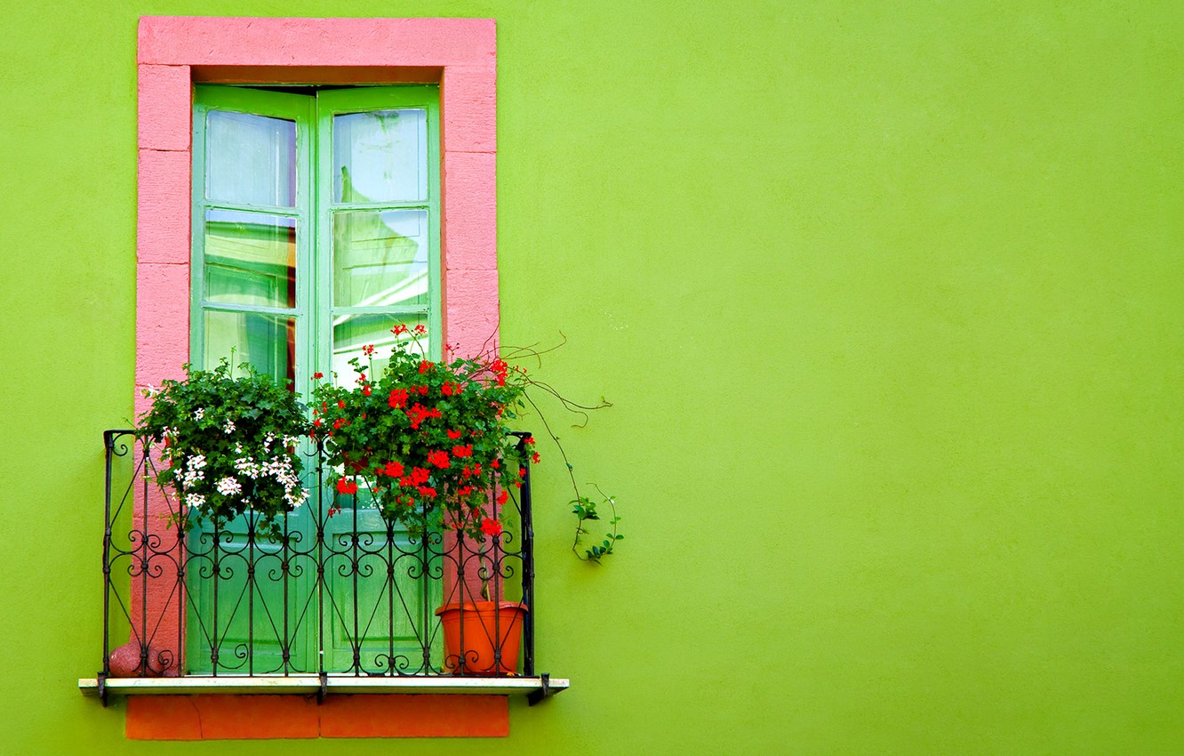 Photo wallpaper flowers, wall, door, balcony, green