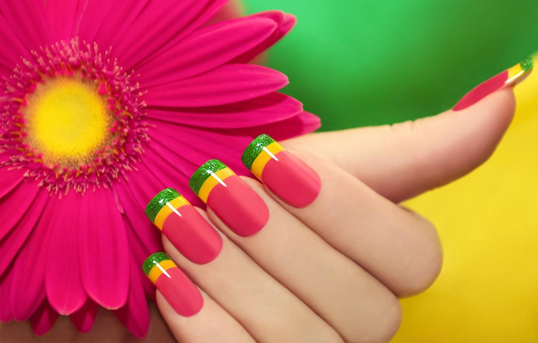 Photo wallpaper flower, pink, color, manicure, gerbera