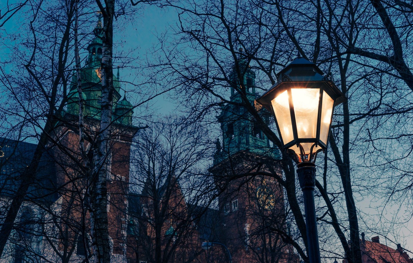 Photo wallpaper twilight, cathedral, trees, dusk, Poland, lamp, branches, church, Krakow