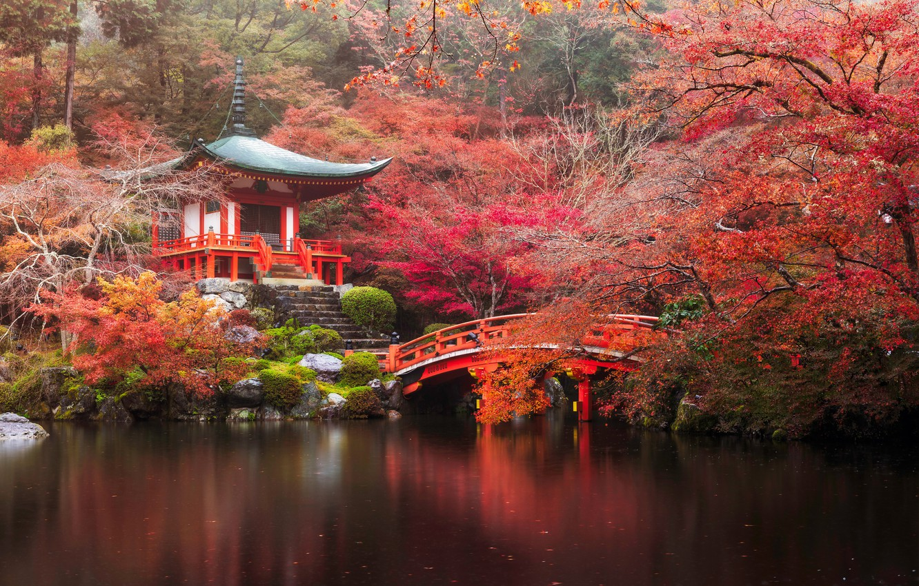 Wallpaper Autumn Forest Bridge River Japan Temple Japan Forest Kyoto River Bridge Autumn Parks Daigo Ji Temple Images For Desktop Section Pejzazhi Download