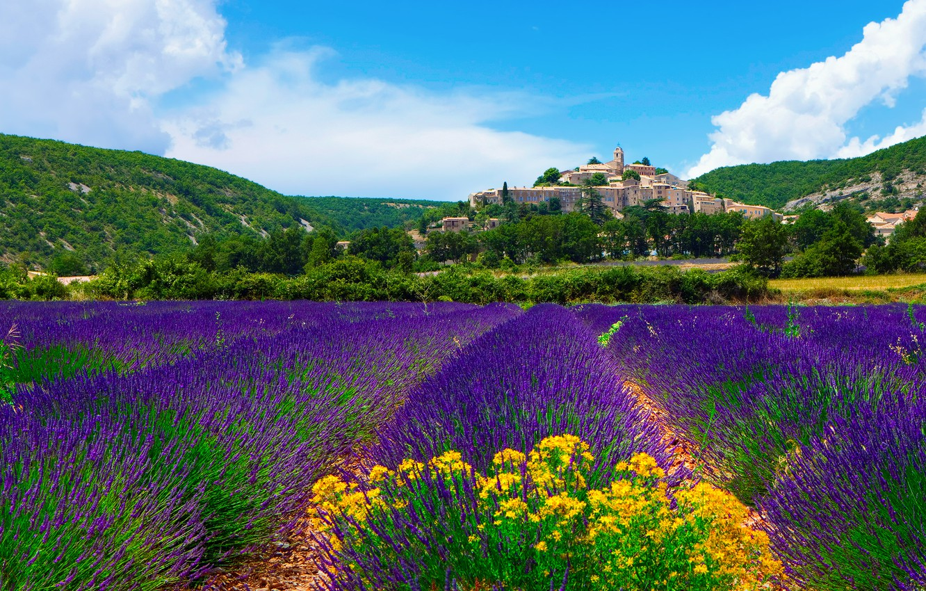 Photo wallpaper the sky, clouds, the city, France, field, lavender, Provence, municipality, Banon, Roland Gerth