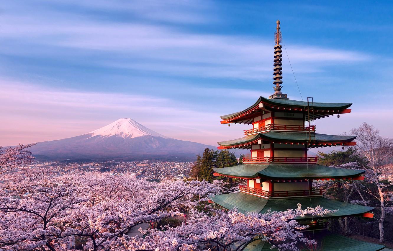 Photo wallpaper trees, flowers, house, mountain, spring, morning, Japan, Sakura, April, pagoda, architecture, Fuji, stratovolcano, Mount Fuji, …