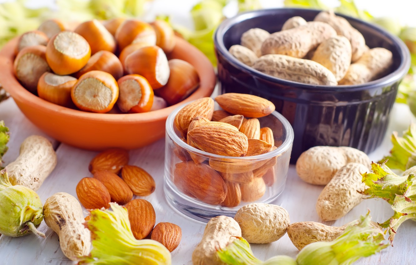 Photo wallpaper dishes, nuts, almonds, hazelnuts, forest