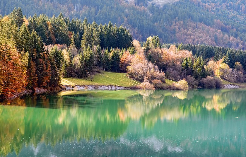 Photo wallpaper autumn, forest, nature, river, shore